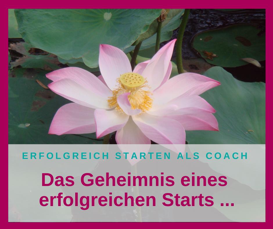 Das Geheimnis eines erfolgreichen Starts als selbständiger Coach