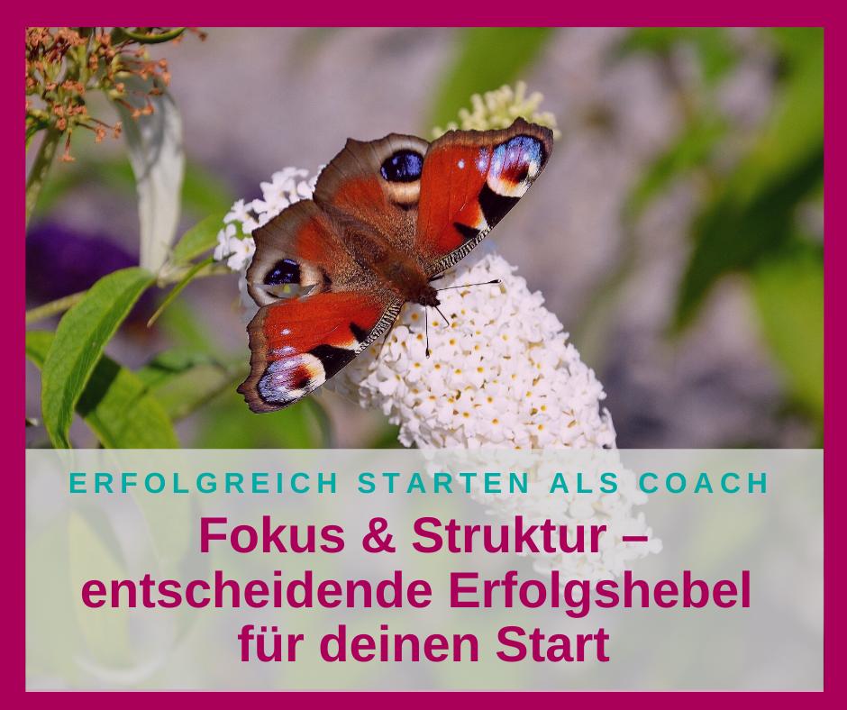 Fokus & Struktur – entscheidende Erfolgshebel für deinen Start