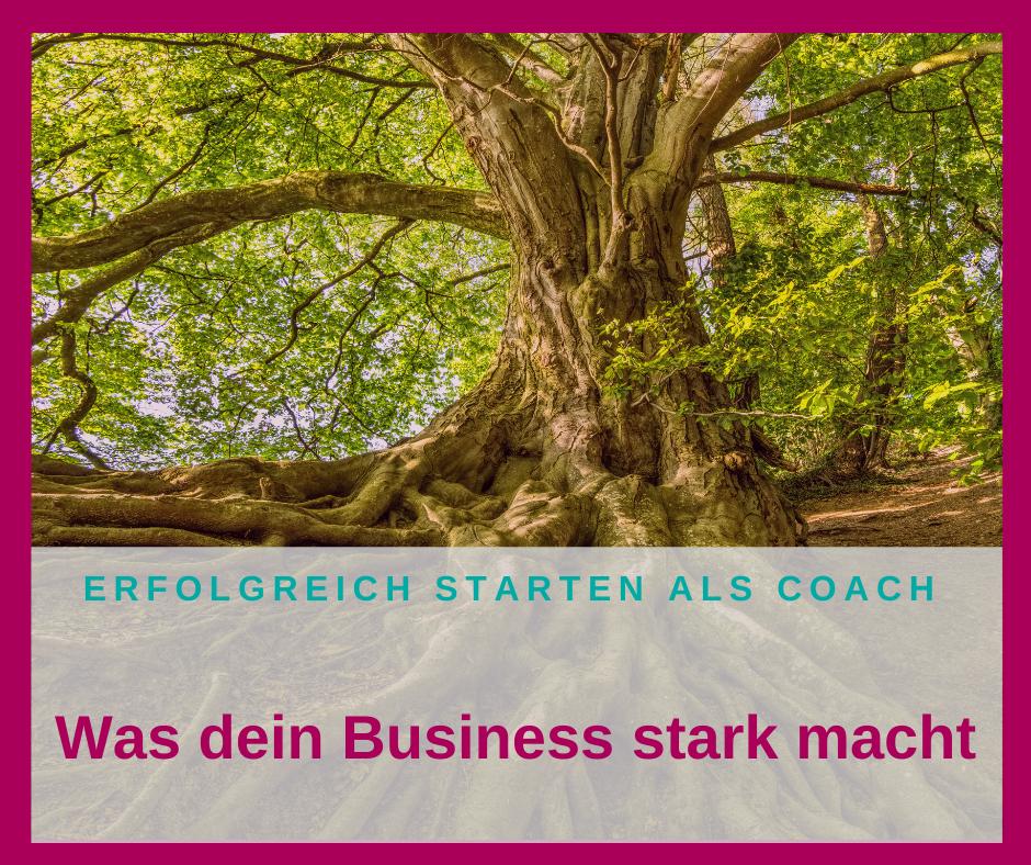 Wie du ein starkes Business aufbaust